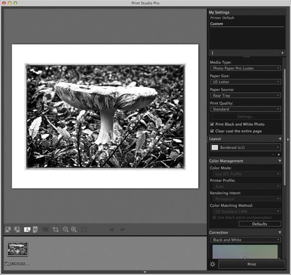 Canon Pixma Pro 10 A 13x19 Pigment Ink Printer Shutterbug