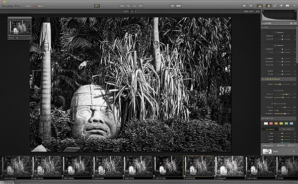 Elements and lightroom with an advanced pro version 69 that adds advanced layers histograms and zone system controls for balancing gray shades