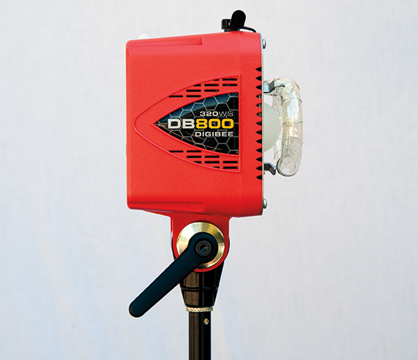 Using Alien Bees At Weddings: Paul C. Buff AlienBees DigiBee 800 Flash Unit Review