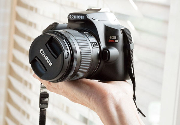 Canon EOS Rebel SL3 Review: A Small & Affordable DSLR to Slay