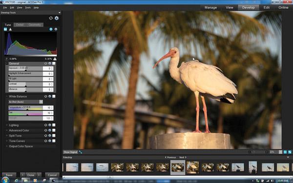 raw photo editor free