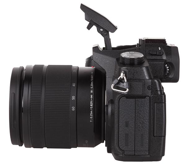 Panasonic Lumix DMC-G85 Mirrorless Camera Review | Shutterbug