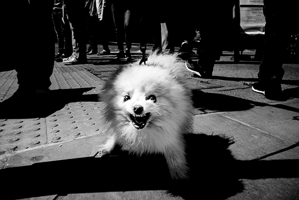7 Tips for Awesome Black-and-White Street Photography (VIDEO)