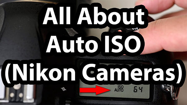 Here's Why Auto ISO Is an Important Feature in Your Camera and How to Use It (VIDEO)