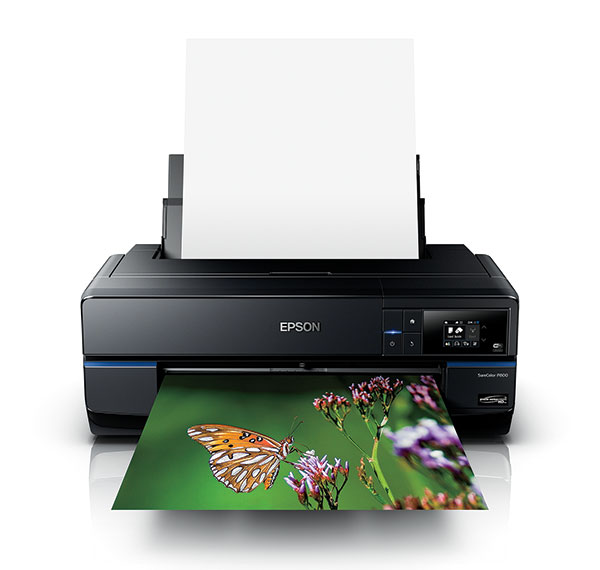 The 5 Best Photo Printers in 2019