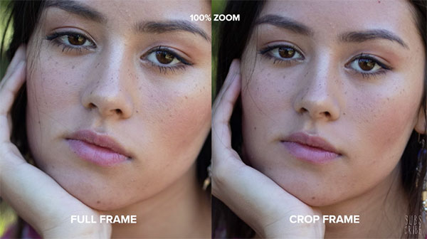 Full Frame vs Crop Frame Sensor Cameras: What Are the Differences? (VIDEO)