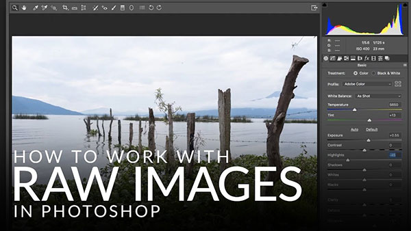 How to Work with Raw Images in Photoshop: Tips from Software Ace Aaron Nace of Phlearn