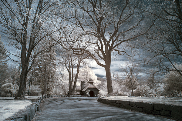 How to Shoot Digital Infrared Photography