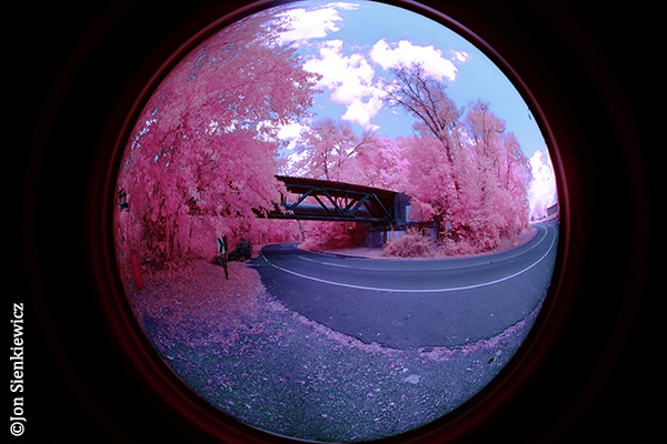 How to Shoot Mind-Bending Infrared Digital Photos with a Modified Camera