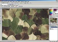 jasc paint shop pro 8.0 free download