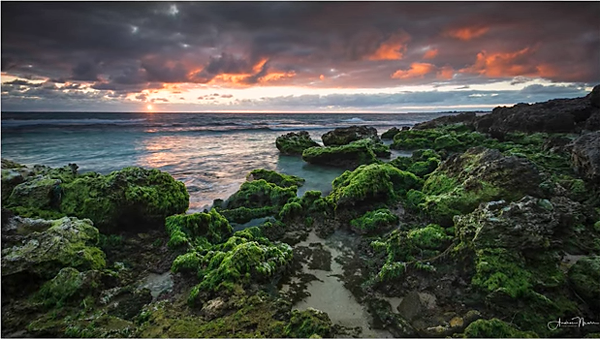 Everything You Need to Know to Capture a Stunning Sunset & Enhance the Image in Lightroom (VIDEO)