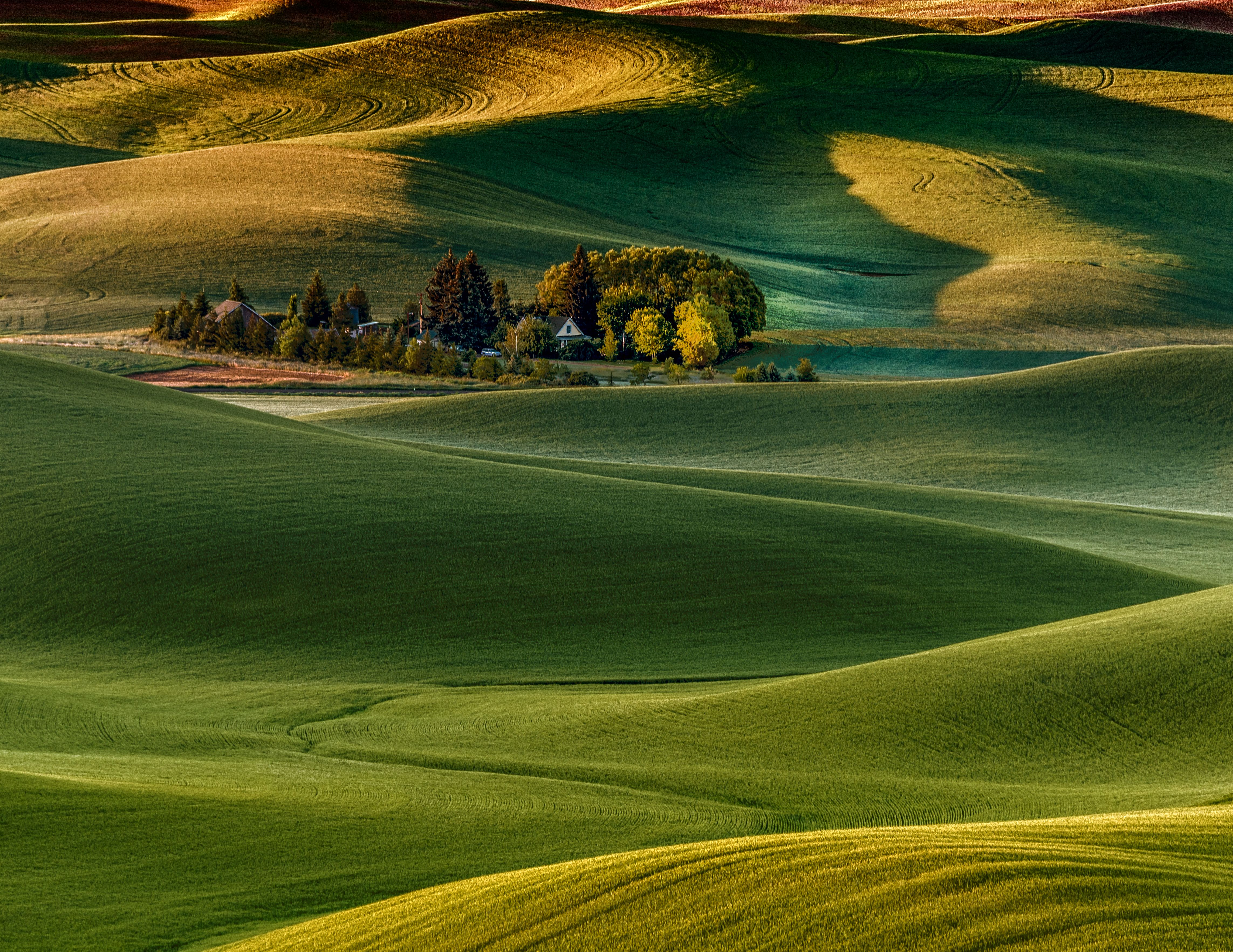 Sunrise From Steptoe Butte At The Palouse Shutterbug