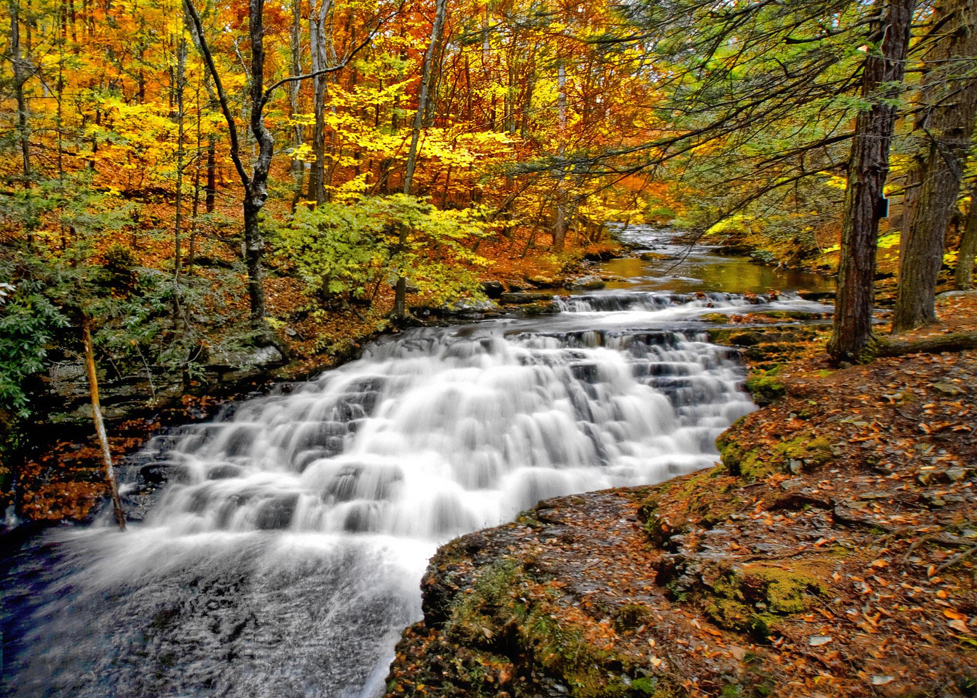 autumn color at bushkilll falls pa