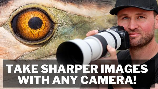 How to Shoot RAZOR SHARP Photos with ANY Camera - OverStockPhoto
