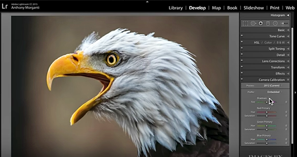 Unlock the Hidden Power of Lightroom with These Quick Tips from Anthony Morganti (VIDEO)