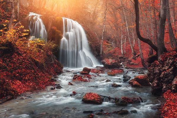 5 Quick and Simple Tips for Shooting Radiant Images of Fall Foliage