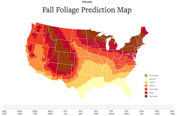 This Interactive Map Shows You the Best Days for Photographing Fall Foliage Across the United States