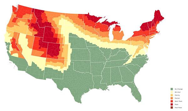 Fall Photography Tips: Here's When Autumn Foliage Reaches Peak Color in Your Area