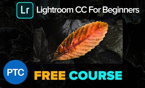 This FREE Lightroom CC Course Has 6 Basic Lessons to Get You Up to Speed in a Hurry (VIDEO)