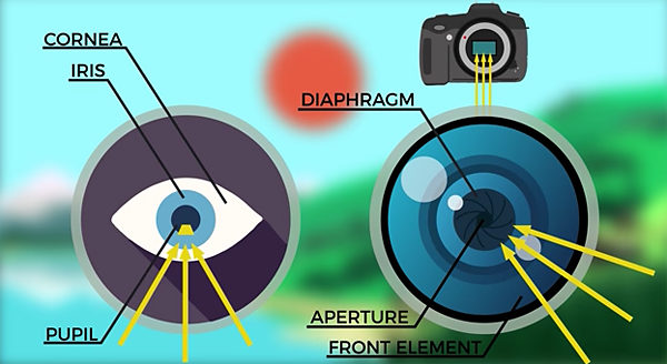 Everything You Always Wanted to Know About Aperture But Were Afraid to Ask (VIDEO)