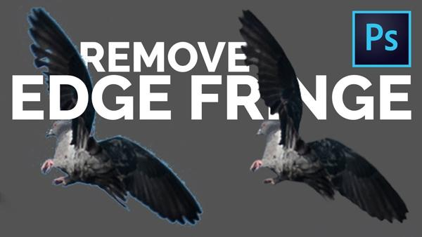 "Photoshop Tips: 2 Simple Tricks for Removing Ugly White Edges or ""Fringing"" from Photos (VIDEO)"