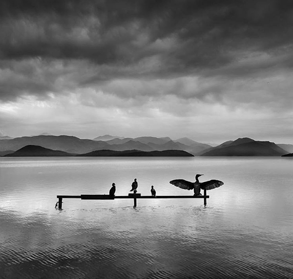 Behold the Serene Minimalist B&W Landscapes of Greek Nature Photographer George Digalakis