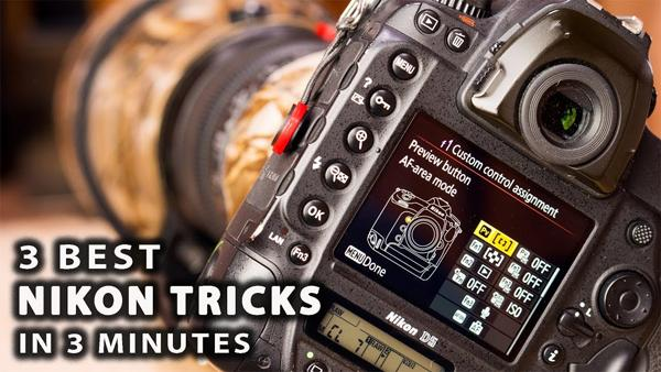 These Are the 3 Best Camera Settings for Shooting Wildlife Photos with a Nikon DSLR (VIDEO)