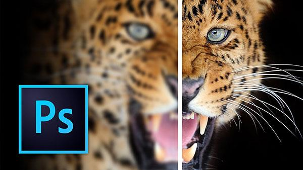 Here Are Some of the Best Ways to Sharpen Your Images in Photoshop (VIDEO)