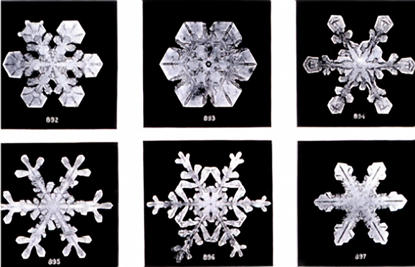 These Are the First Known Photos of Snowflakes Ever Made: Shot by a Vermont Farmer in 1885