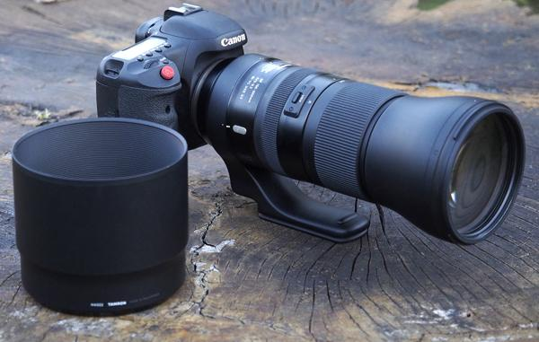 Tamron SP 150-600mm f/5-6.3 Di VC G2 Super Telephoto Zoom Lens Review