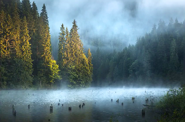 25 Landscape Photography Tips and Tricks That Will Deliver Spectacular Results (VIDEO)