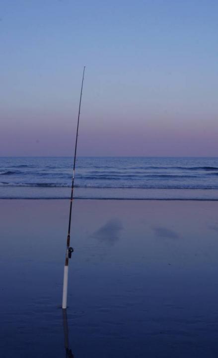 lone fishing pole | shutterbug, Fishing Rod